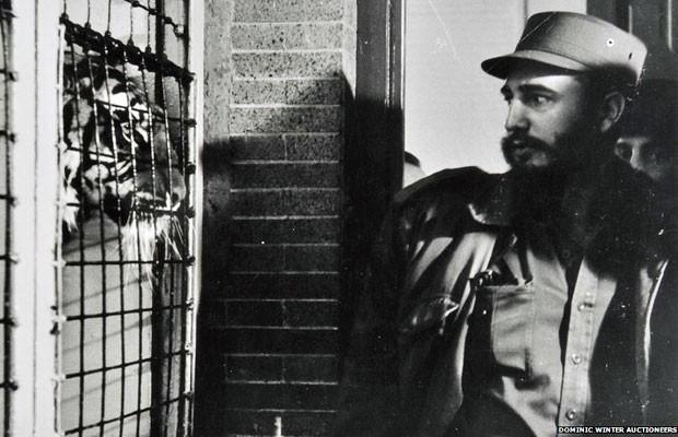 As fotos, impressas em tamanho grande, foram disponibilizadas pela filha do fotógrafo, Norka Korda, e vieram de sua coleção pessoal. Uma delas é a imagem acima, que mostra Fidel Castro no zoológico do Bronx (Nova York) em 1959. A foto foi publicada na rev