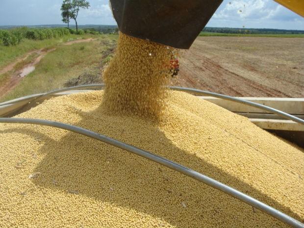 Previsão da Aprosoja/MS é que colheita no estado seja encerrada em março (Foto: Anderson Viegas/G1 MS)