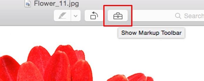 Clique no ícone da caixa de ferramentas (Foto: Reprodução/André Sugai)