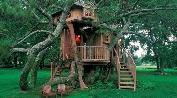 Seja criança de novo e fuja para o topo da árvores ao anoitecer  (Foto: Reprodução)