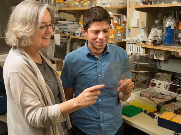 Pesquisadores Victoria Lundblad e Timothy Tucey fizeram descobertas sobre como funciona a enzima telomerase (Foto: Cortesia do Salk Institute for Biological Studies)
