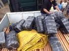 Homem é preso com 700 kg de maconha (Divulgação/Polícia Federal)