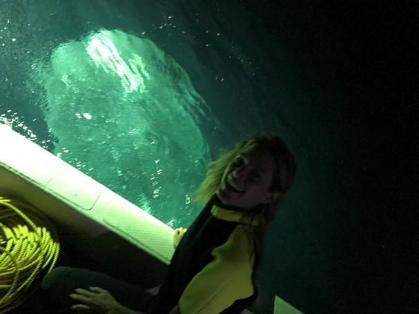 Mergulhando com os gigantes tubarões brancos! (Foto: Divulgação)