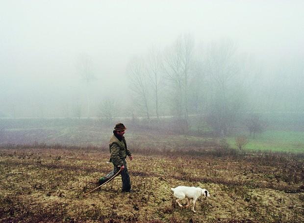 Cão treinado e seu dono saem em busca de trufas no Piemonte (Foto: Christopher Pillitz / Getty Images)