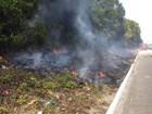 Incêndio atinge Mata do Buraquinho neste sexta-feira em João Pessoa