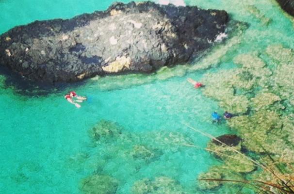 Mergulho na Ilha de Fernando de Noronha (Foto: Divulgação/ Arquivo pessoal)