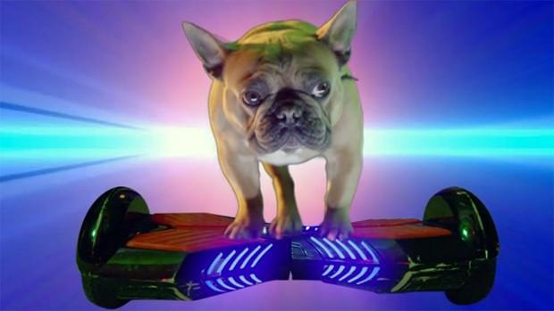 O bulldog de 2 Chainz no clipe de Not Invited (Foto: Reprodução/Youtube)
