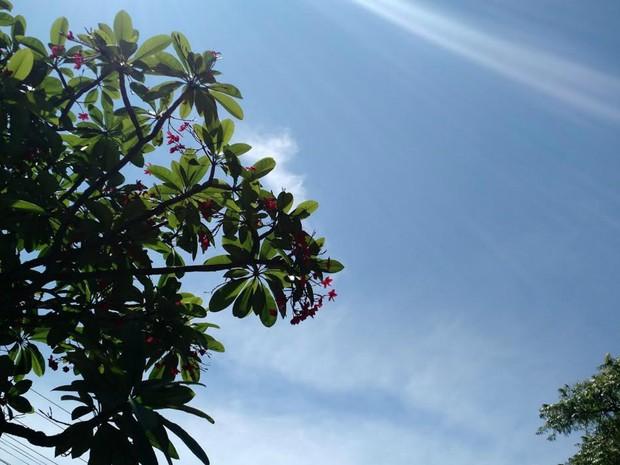 Céu com sol entre nuvens nesta segunda-feira, em Campo Grande (Foto: Adriel Mattos/ G1 MS)