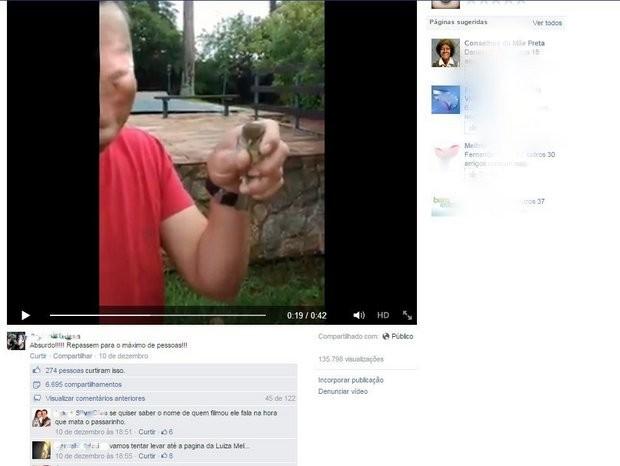 Em vídeo, funcionário de Prefeitura atira pássaro contra parede (Foto: Reprodução/Facebook)