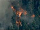 Na Califórnia, calor provoca incêndio e deixa quatro mil casas em risco