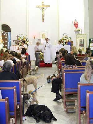 Missa animais domésticos São Roque Juiz de Fora 3 (Foto: Natália Lott/ Pascom Paroquia da Glória)