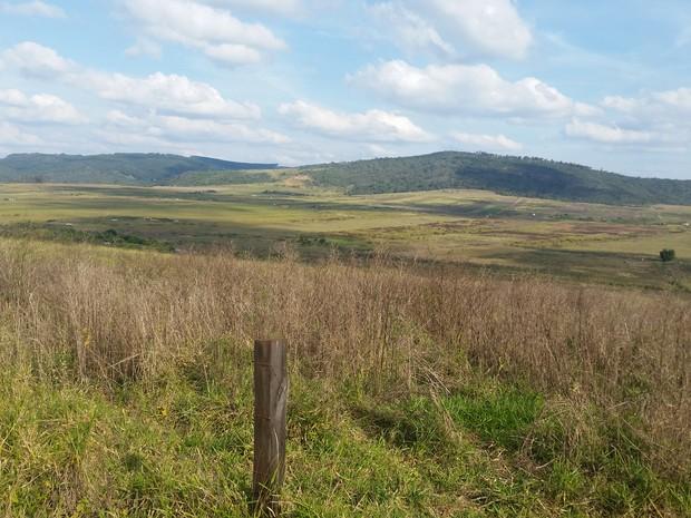 Área de 3,6 mil hectares é alvo de disputa entre MST e proprietários há 14 anos em Campo do Meio (Foto: Régis Melo / G1)