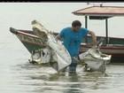 Avião que caiu começa a ser retirado da água em Maricá, no RJ