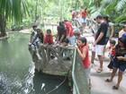 Bosque tem programação especial para a comemoração do Dia da Água