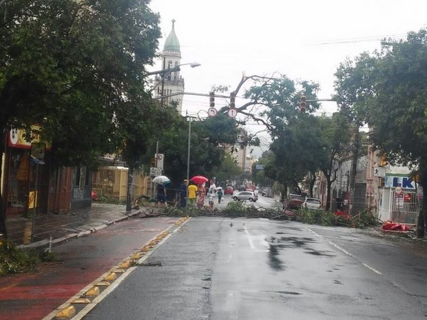 Rua José do Patrocínio, na Cidade Baixa, segue com bloqueio por árvore caída (Foto: Divulgação/EPTC)