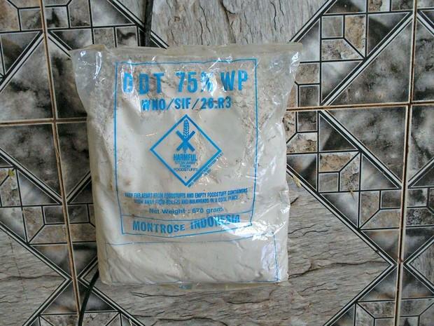 O DDT era usado para combater a malária, principalmente na região amazônica  (Foto: Aldo Moura/Arquivo pessoal)