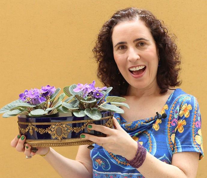 Aprenda a cuidar de violetas com as dicas da paisagista Nô Figueiredo (Foto: Divulgação)