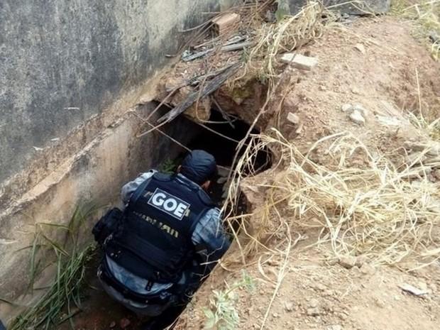 Suspeito foi localizado dentro de buraco em terreno baldio (Foto: Jaru Online/Reprodução)