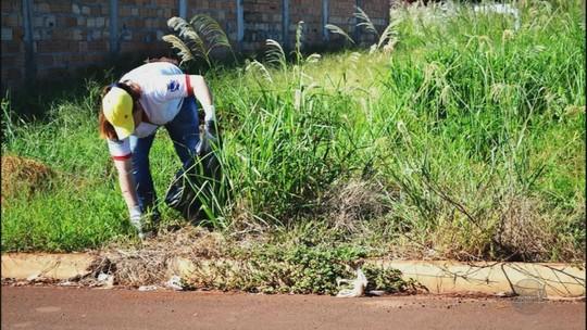 Agentes vão às ruas de 26 cidades da região em dia de combate ao Aedes