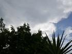 Quarta-feira, 24, deve ser chuvosa em Vilhena e Cone Sul de Rondônia