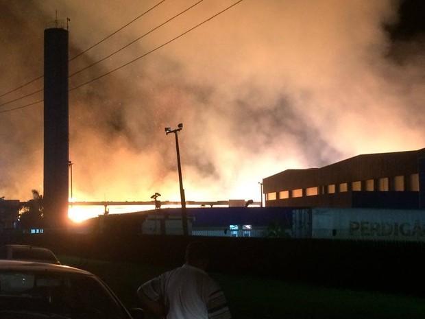 Fogo atingiu uma área de cerca de 50.000 m2, segundo a RPC (Foto: Fernanda Canovas/RPC)
