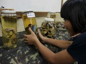 Exposição de animais peçonhentos atraiu os olhares da criançada (Foto: Katiúscia Monteiro/ Rede Amazônica)