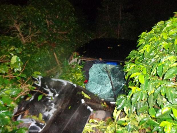 Após acidente, motorista saiu da pista e entrou em cafezal (Foto: Polícia Rodoviária Estadual)