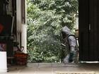 Bairros de pacientes com dengue recebem inseticida em Porto Alegre