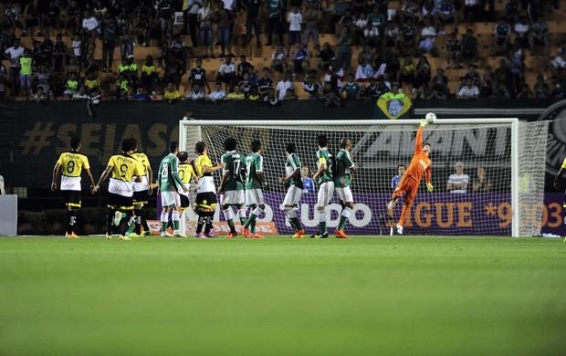 Fábio Palmeiras Criciúma (Foto: Marcos Ribolli/GloboEsporte.com)