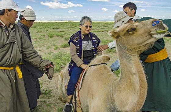 Na Mongólia, Mitiko anda em um camelo nas estepes  (Foto: © Haroldo Castro/Época)