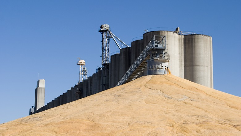 agricultura_milho_ (Foto: Thinkstock)