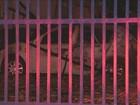 Homem morre durante incêndio em estacionamento de Campinas, SP