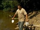 Ribeirinhos estão preocupados com nova mortandade de peixes no TO