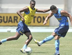 Elkeson e Brinner, Botafogo (Foto: Fernando Soutello / AGIF)