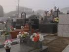 Moradores temem infestação de escorpiões em cemitério de Heliodora