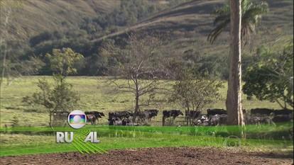 Globo Rural - Edição de Domingo, 22/11/2015