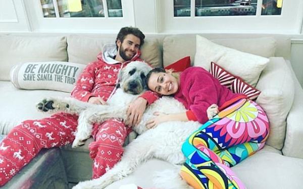 A cantora Miley Cyrus com o noivo, o ator Liam Hemsworth, e o cachorro dos dois (Foto: Instagram)