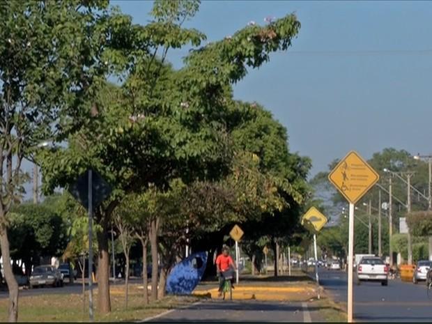 Três Lagoas MS (Foto: Reprodução/TV Morena)