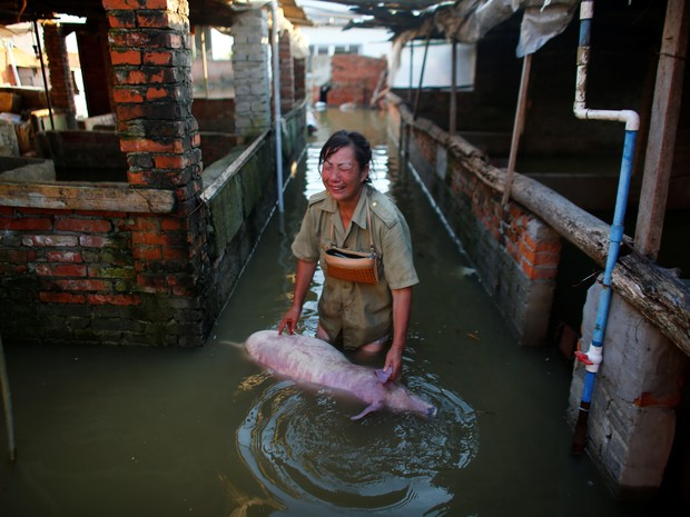 Mulher chora morte de porco em fazenda inundada em Xiaogan, na China (Foto: Darley Shen/Reuters)