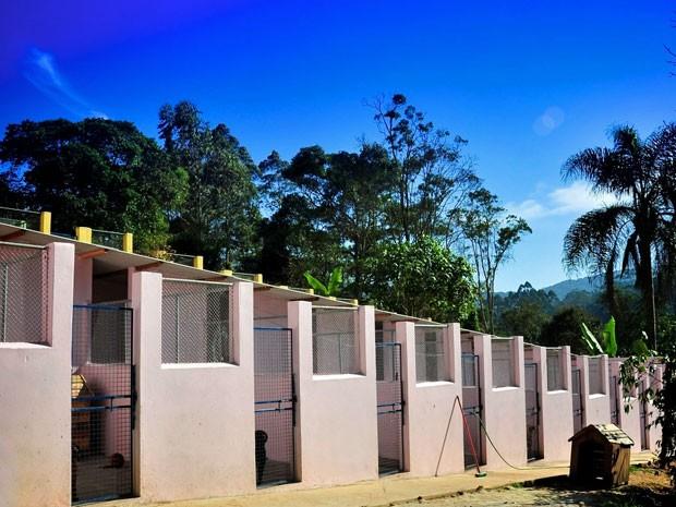 Ala de canil do Clube dos Vira-Latas, em Ribeirão Pires, que abriga cerca de 500 cães (Foto: Divulgação/Clube dos Vira-Latas)