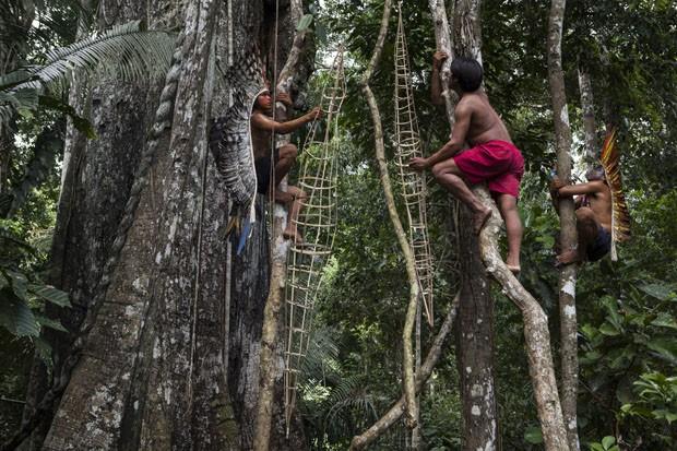 'Somos todos responsáveis por salvar a Amazônia', diz Marcelo Rosenbaum (Foto: Marcos Lopes e Lucas Moura )