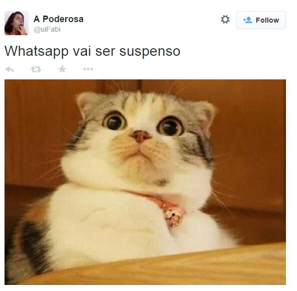 WhatsApp meme14 (Foto: Reprodução/Twitter)