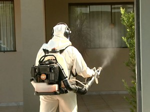 Rincão não tem kits para diagnosticar doenças transmitidas pelo Aedes aegypti (Foto: Rodrigo Sargaço/EPTV)