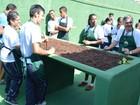 Apae atende 1,5 mil pessoas com deficiência intelectual no Alto Tietê