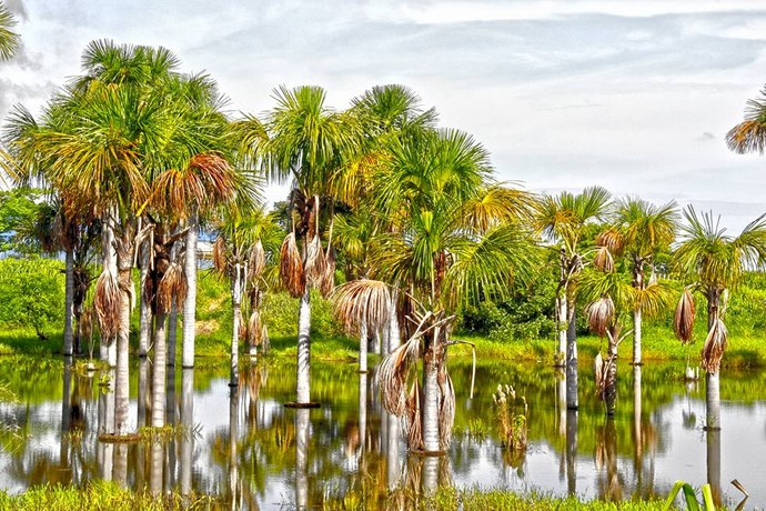 Lázaro Nunes fotografou uma linda paisagem no município de Colider (Foto: Lázaro Nunes)