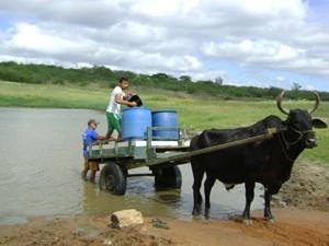 Açude é uma das poucas opções para consumo doméstico e de animais em Olivedos (Foto: Taiguara Rangel/G1)