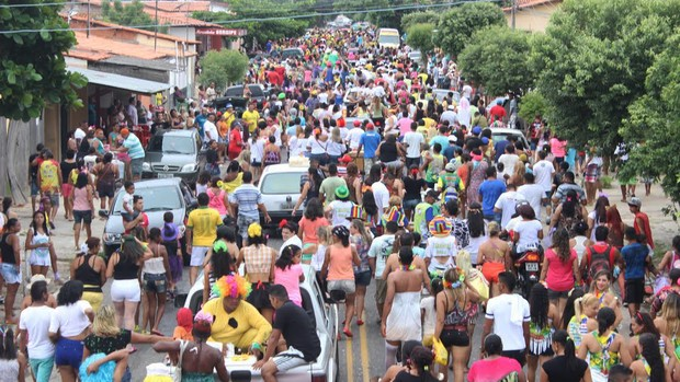 'Vaca Atolada' arrasta 5 mil foliões pela Zona Norte de Teresina (Marco Freitas/G1)