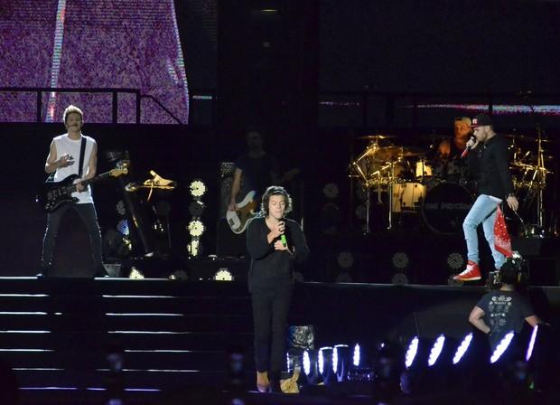 Show da banda One Direction no Rio (Foto: Roberto Teixeira / EGO)