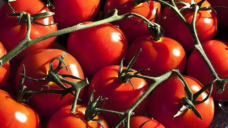 tomate-hortifruti-fruta (Foto: Liz West/CCommons)