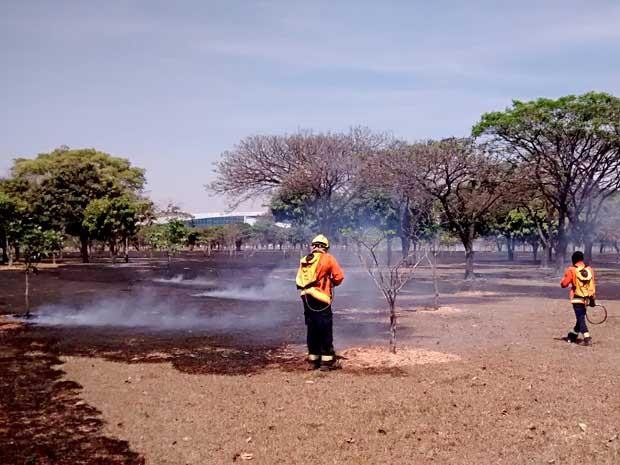 Bombeiros trabalham para conter incêndio às margens do Eixo Monumental, em Brasília (Foto: Lucas Nanini/G1)